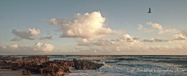 rockyshore