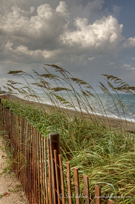 stevedaponte_coral_cove_fenceline_img1118
