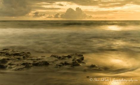 steve_daponte_goldenlight_seascape