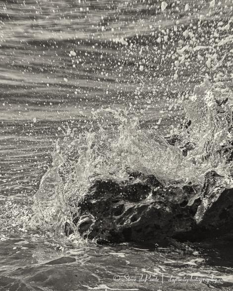 steve_daponte_wavemeetsrock