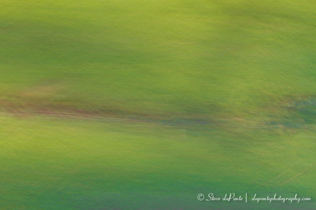 steve_daponte_abstract_abstractgreen3_img0815