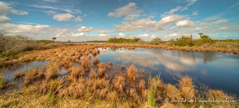 stevedaponte_merritt_island_landscape_img4154