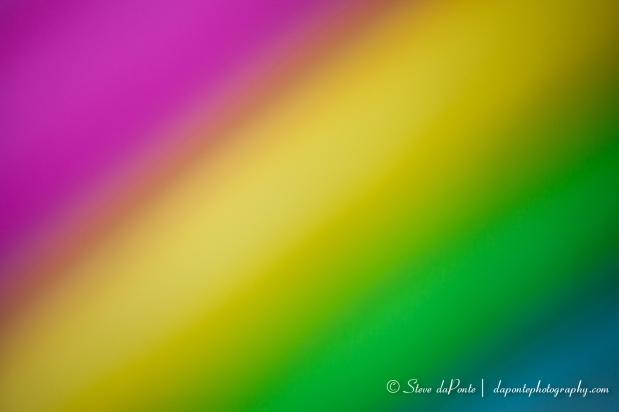 steve_daponte_colorfull_img0922