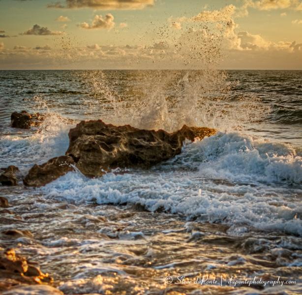 steve_daponte_splashingwaves_img3885