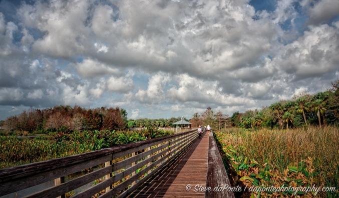 steve_daponte_green_cay_wetlands_dsc03730